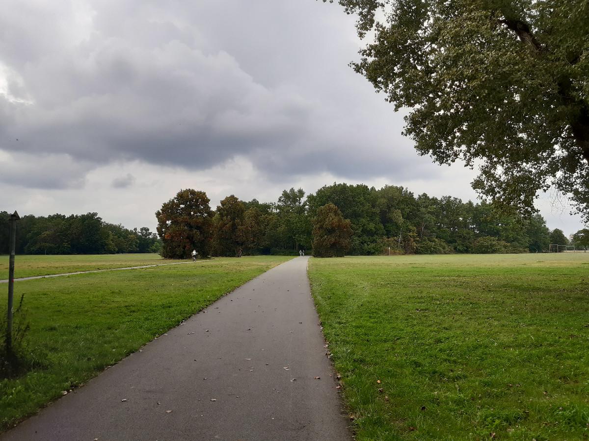 2021-09-14-04-39-35-2durchdenVolksparkMarienberg.jpg - Atelier Haberbosch Nürnberg