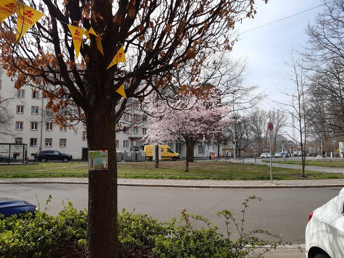 2021-04-30-04-14-32-7.jpg - Atelier Haberbosch Nürnberg